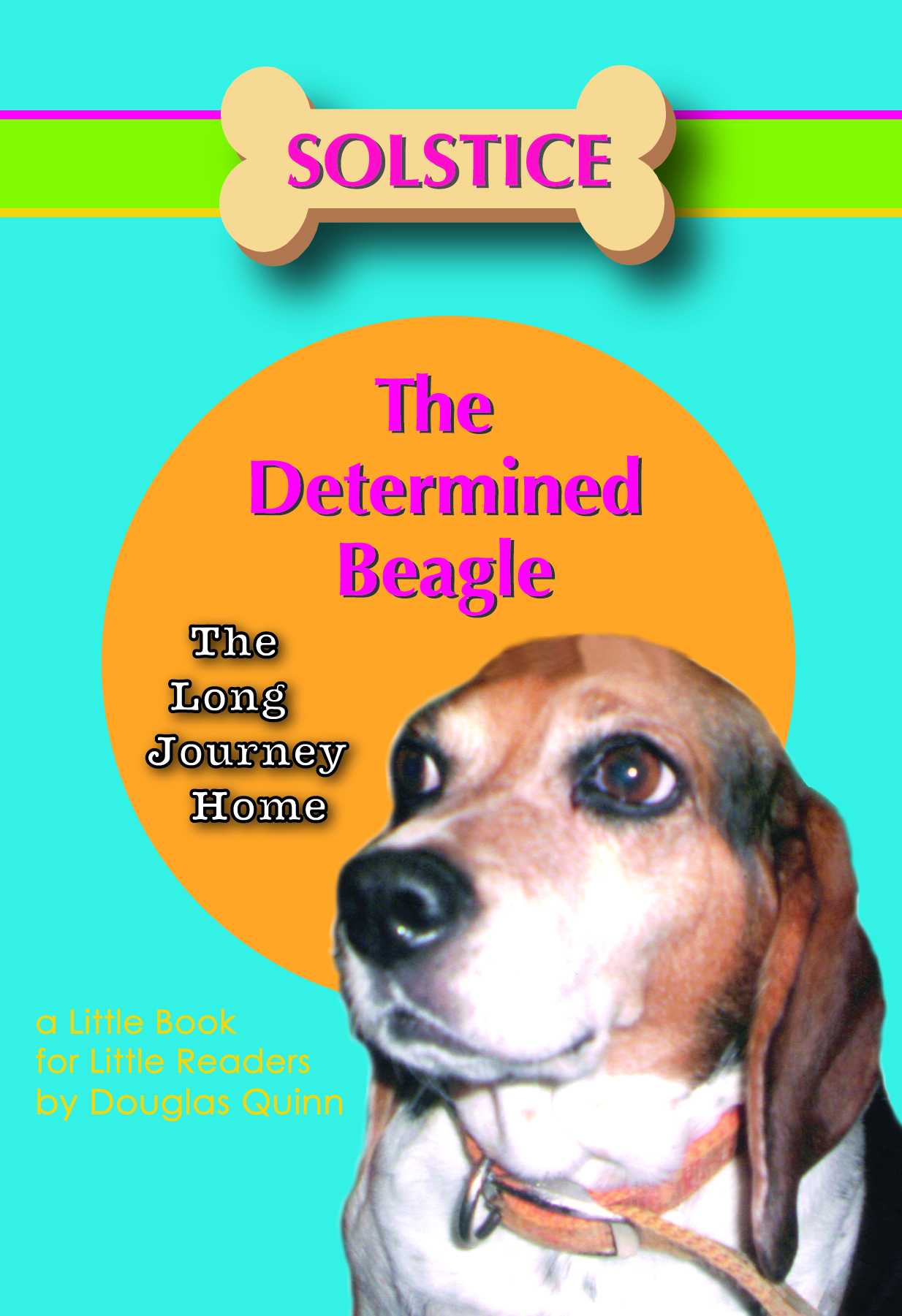 Solstice the Determined Beagle---The Long Journey Home